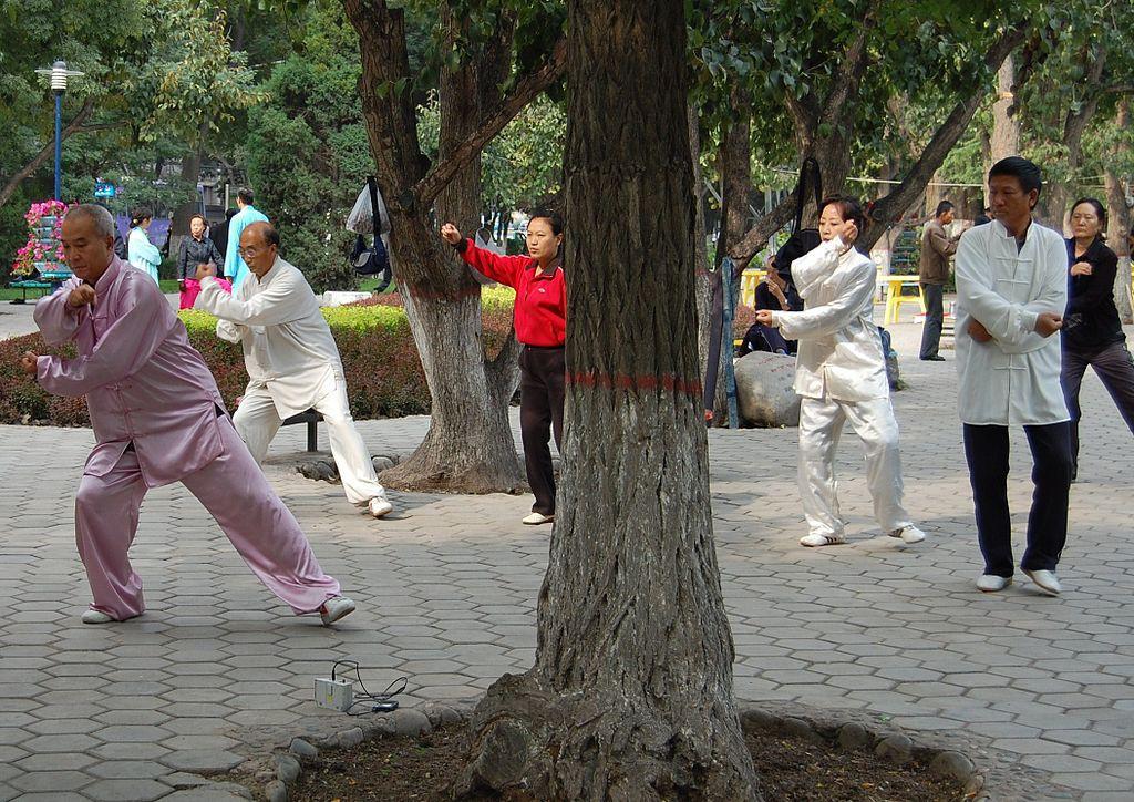 Practicando Tai chi. Foto: Sigismund von Dobschütz (licencia CC)