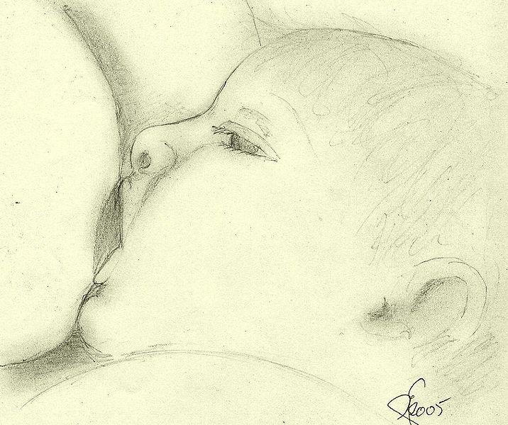 lactancia-dibuix