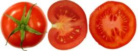 Tomate. Foto: FoeNyx